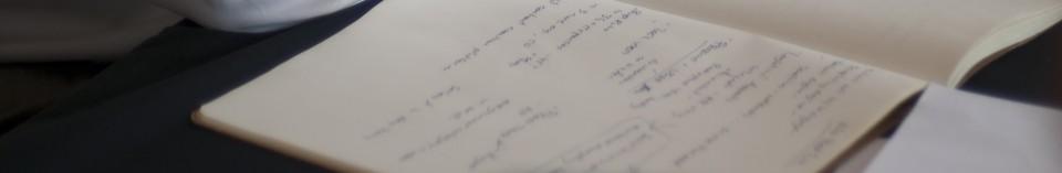 David's Notebook
